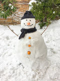 Snowman background. Snowman on the snow has carrot noise Stock Image