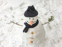Snowman background. Snowman on the snow has carrot noise Royalty Free Stock Photo