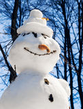 The snowman with a carrot nose Stock Photography