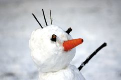 Snowman with carrot nose at first snowy day. Closeup photo. Winter background.  stock images