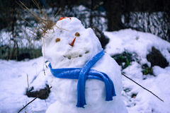 Snowman. With carrot in the winter Royalty Free Stock Photography