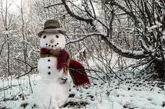 Snowman. A cheerful snowman with a hat and scarf. Snowman in the park stock photo