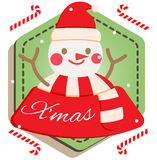 Snowman. Christmas gift winter  merry christmas green Royalty Free Stock Photography