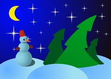 Snowman on Christmas night in the woods Stock Image