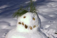 Snowman Close-up. Face of snowman in wintery landscape Stock Images