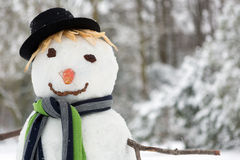 Snowman closeup. Closeup of a smiling snowman with carrot and scarf Royalty Free Stock Photos