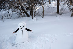Snowman Comes Alive Stock Photography