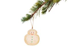Snowman cookie hanging on christmas tree branch Stock Photo