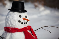 Snowman face. A winter snowman closeup with top hat and carrot nose Stock Photography