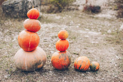 Snowman figurine with pumpkins Royalty Free Stock Image