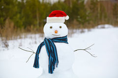 Snowman in a forest Royalty Free Stock Images