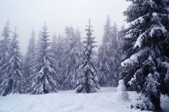 Snowman in the forest among the trees in the snow stock photography