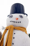 Snowman frost Royalty Free Stock Photo