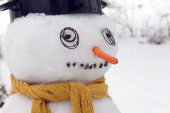 Snowman frost Royalty Free Stock Photography