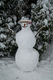 Snowman in a garden. A snowman during the Swiss winter Royalty Free Stock Image