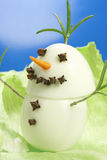 Snowman gourmet Royalty Free Stock Image
