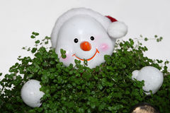 Snowman in Grass Royalty Free Stock Photos