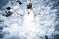 The snowman Stock Images