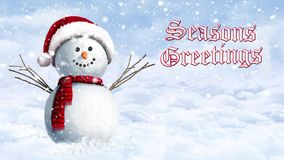 Snowman Hanging Out on a Winter Day Seasons Greetings stock video footage