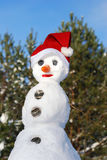 Snowman with hat, carrot nose Royalty Free Stock Image