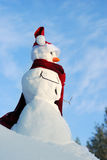 Snowman with hat, carrot nose Royalty Free Stock Photography