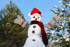 Snowman with hat, carrot nose Stock Images