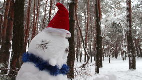 Snowman in hat of Santa Clausin forest stock video