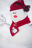 Snowman with hat and scarf Stock Photos