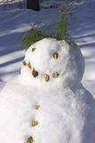 Snowman Head and shoulders. Close-up photo of snowman with pebbles and evergreen used as facial and body features Royalty Free Stock Photos