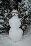 Snowman i en trädgård Royaltyfri Bild