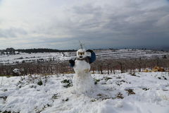 Snowman in Israel Royalty Free Stock Image