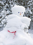 Snowman made by nature and resourceful man Royalty Free Stock Photography