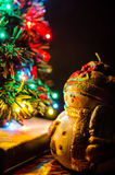 Snowman. Is meeting New Year Royalty Free Stock Photo