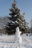 Snowman near the snow-covered fir trees in the frosty winter mor Royalty Free Stock Photos