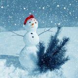Snowman och snow Arkivfoton