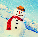 Snowman Outdoors White Scenery Christmas Celebration Concept Stock Photo