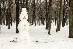 Snowman in park Royalty Free Stock Image