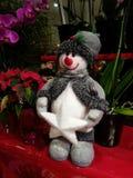 Snowman among the Plants Stock Photos