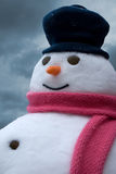 Snowman portrait Royalty Free Stock Images