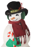 Snowman Portrait Royalty Free Stock Photos