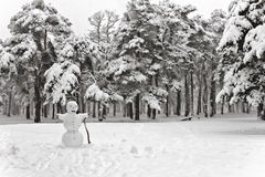 Snowman in the snowfall Royalty Free Stock Image