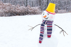 Snowman is standing on winter background. Royalty Free Stock Photography