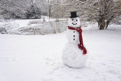 Snowman. Standing in winter landscape Royalty Free Stock Photos