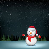 Snowman stars night wood. The snowman in Santa hat on night wood and stars background. Christmas holiday celebration Stock Photo