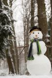 snowman szczęśliwy Fotografia Royalty Free