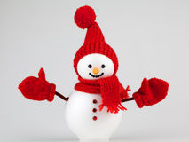 Snowman on white Royalty Free Stock Photo