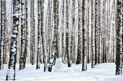 Snowman in winter birch forest Royalty Free Stock Images