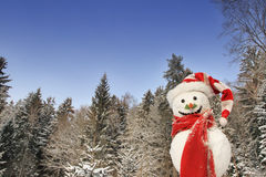 Snowman in winter in front of forest - christmas outdoor. Royalty Free Stock Photography