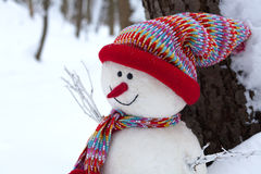 Snowman in winter landscape Royalty Free Stock Image