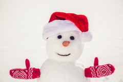 Snowman in winter park Royalty Free Stock Photo